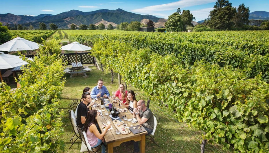 Saint-Clair-Family-Estate-Vineyard-Kitchen-Marlborough