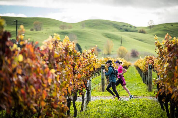 Air New Zealand Hawke's Bay International Marathon.