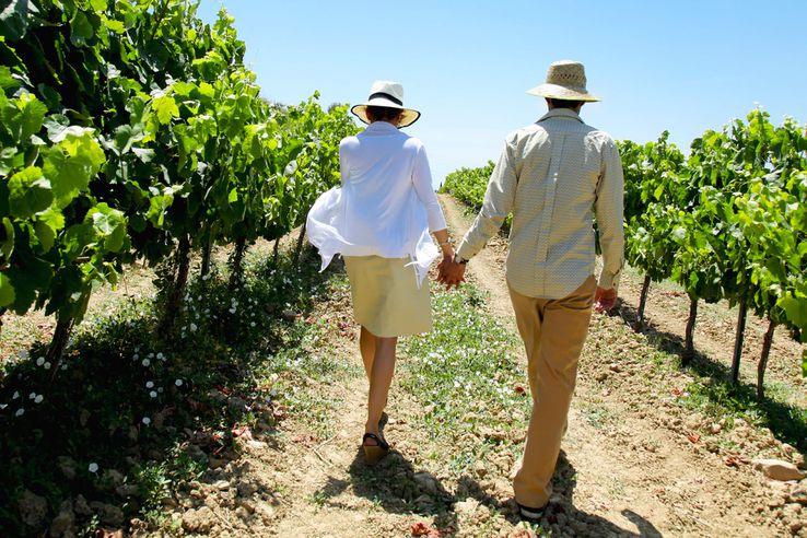 Couple walking in a vineyard.