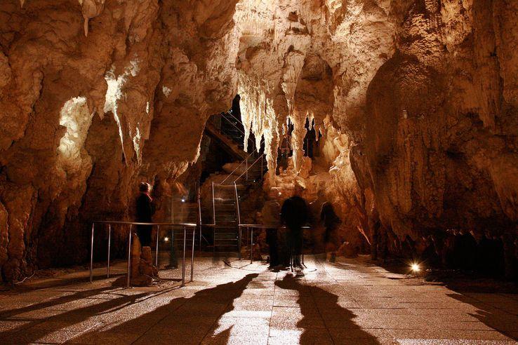 Waitomo Caves, Waikato, New Zealand.