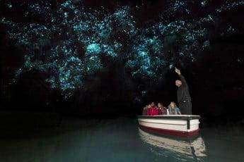 Glowworm caves, Waitomo, New Zealand