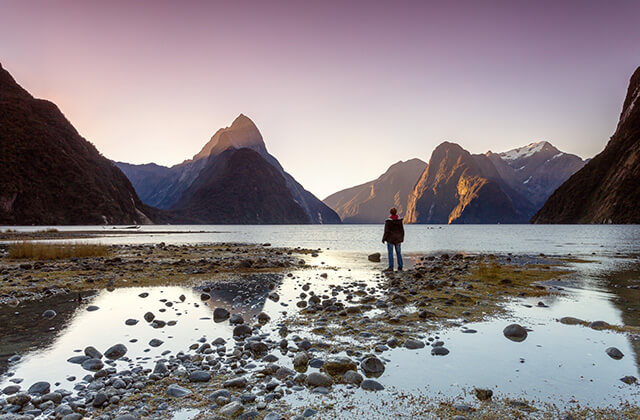 Man Looking at View Milford Sound Fiordland National Park, Queenstown, New Zealand