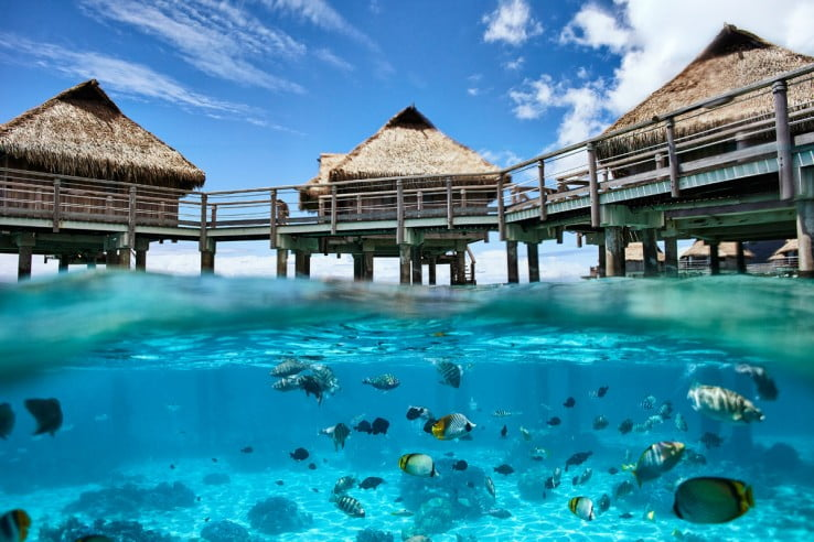 Huts overlooking lagoon full of fish in Tahiti