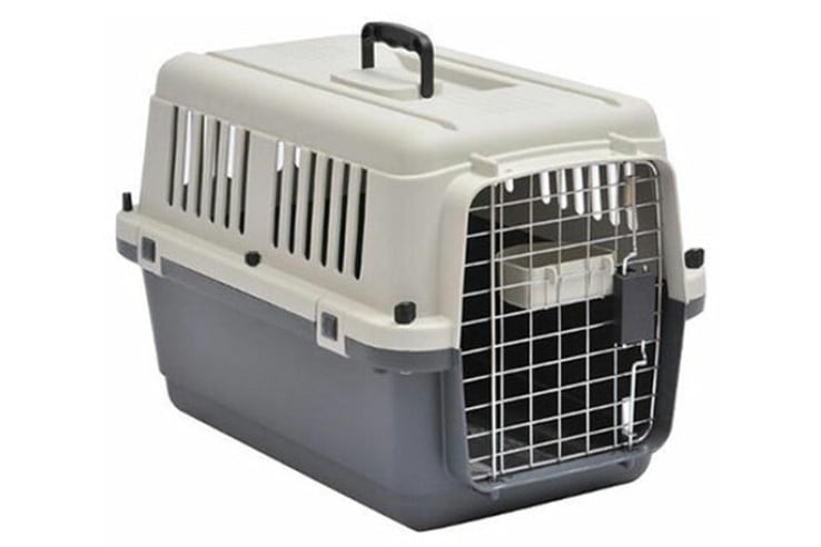 Pet-shipping-images-acceptable-738x492.jpg